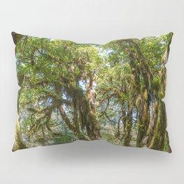 Hoh Rainforest Pillow Sham