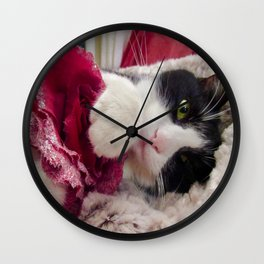 Orazio very sweet cat Wall Clock