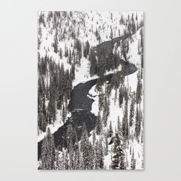 Yellowstone National Park - Lewis River Canvas Print