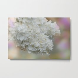 the beauty of a summerday -44- Metal Print