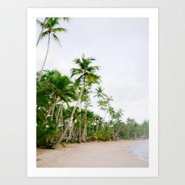 Paradise found | Coastal beach fine art photography print | The Dominican Republic Art Print