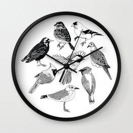 Birds of the Northeast Wall Clock
