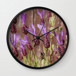 French Lavender (Lavandula stoechas) Wall Clock