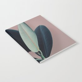 Ficus elastica - berry Notebook