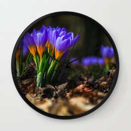 NATUR : Wildlife Wall Clock