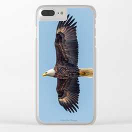 Soaring Bald Eagle in May Clear iPhone Case