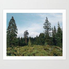 Mt. Shasta, November III Art Print