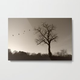 Melancholy in December Metal Print