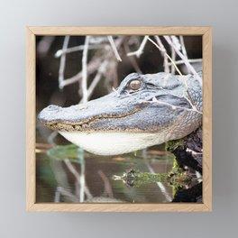 Watercolor Alligator Framed Mini Art Print