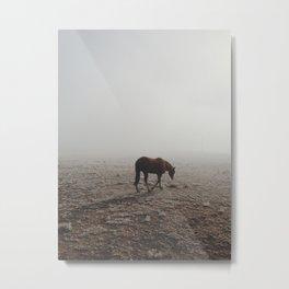 Fogged Horse Metal Print