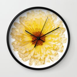 Beautiful Yellow Marigold Vector Isolated Wall Clock