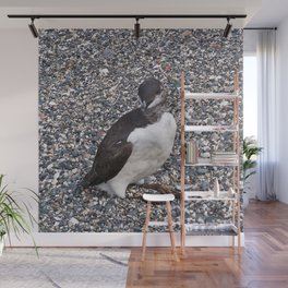 Razorbill Walking on the Beach Wall Mural