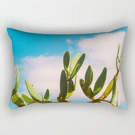 Beautiful Vintage Photo Green Cactus With Blue Sky White Cloud Rectangular Pillow