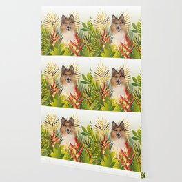 Collie Dog sitting in Garden Wallpaper