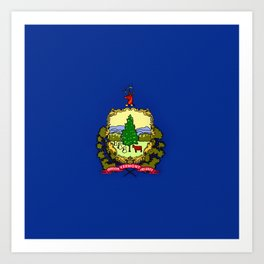 Vermont State Flag Art Print