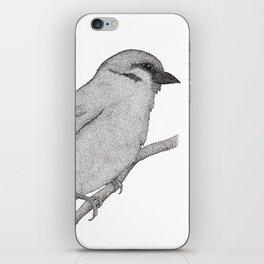 A Bird named Johan iPhone Skin
