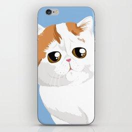 Snoopy  iPhone Skin
