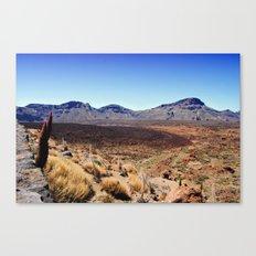 Teide National Park Canvas Print