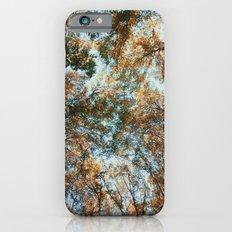 look up Slim Case iPhone 6s