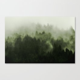 Drift - Green Mountain Forest Canvas Print