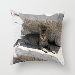 Guardian Of The Ruins Throw Pillow