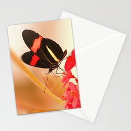 Butterfly - Postman - Heliconius melpomene Stationery Cards