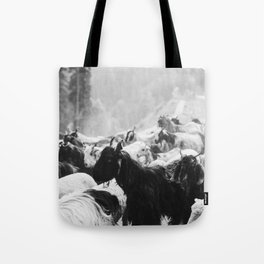 Grazing cattle, Kashmir, India - 3 Tote Bag