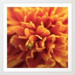 Bug a Flower Art Print