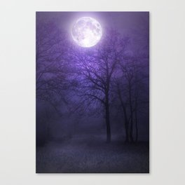 lonely moon Canvas Print