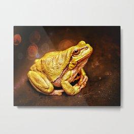 The InFocus Happy Frog Collection III Metal Print