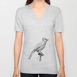 Albino Blue Jay - Square Format Natural History Bird Portrait Unisex V-Neck