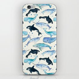Whales, Orcas & Narwhals iPhone Skin