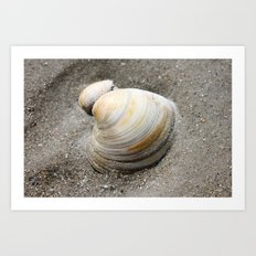 Shell in the Sand Art Print
