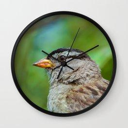Sparrow the Portrait Wall Clock