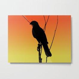 Cooper's Hawk Silhouette at Sunset Metal Print