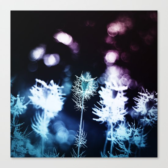 Zircon Canvas Print