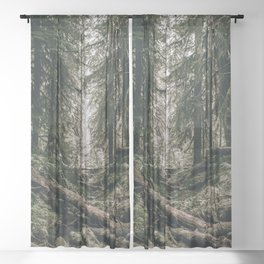 Into the Wild XVI Sheer Curtain