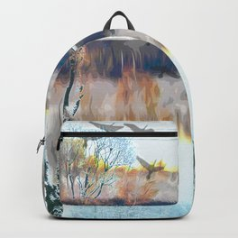 Two seasons with birds  011 21 10 17 Backpack