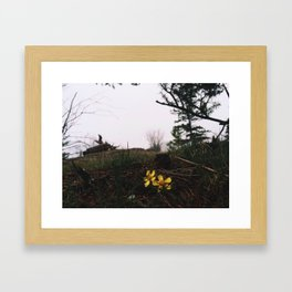 Kelowna, BC Framed Art Print