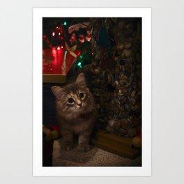 Kitten for Christmas Art Print
