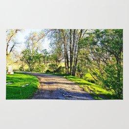 Winding Road Rug