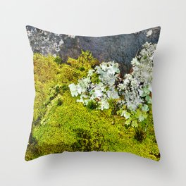 Tree Bark with Lichen#8 Throw Pillow