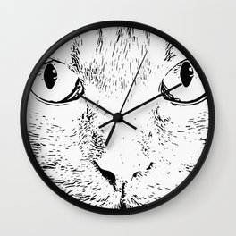 cat looks me in the eyes Wall Clock