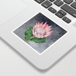 Protea Flower Painting Sticker