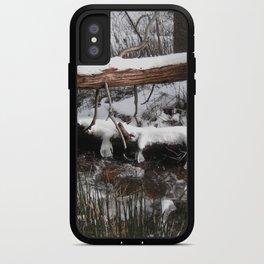 Winter's Light iPhone Case