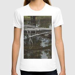 Mirror Pond T-shirt
