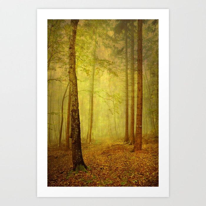 fairytale path Art Print