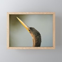 The Anhinga Eye Framed Mini Art Print