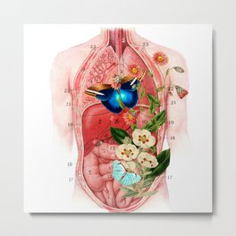 Butterfly in the belly makes flowers grow Metal Print