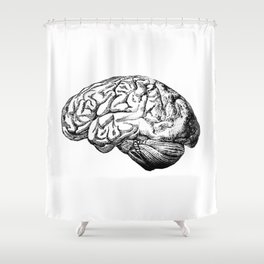 Brain Anatomy Shower Curtain